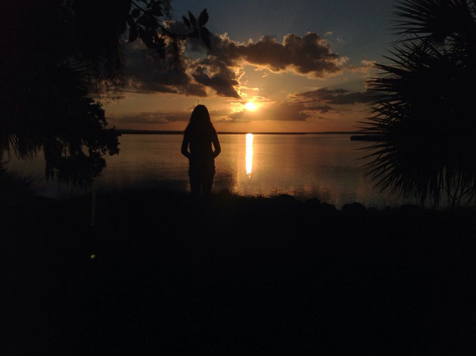 McKinnon Turtle Bench sunset